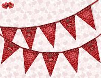 I Love You mix Valentines Day Themed Bunting Banner 15 flags by PARTY DECOR