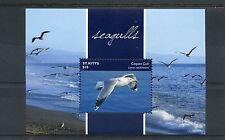 St Kitts 2015 MNH Seagulls 1v S/S I Birds Caspian Gull
