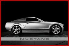 FITS OR FOR FORD MUSTANG CENTER DOOR  TEXT ROCKER STRIPE FACTORY 2005 TO 2014