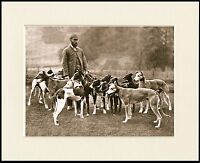 GREYHOUND GENTLEMAN AND TWELVE DOGS LOVELY OLD IMAGE ON DOG PRINT READY MOUNTED