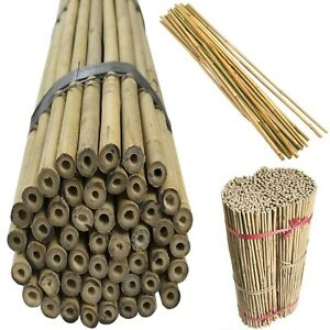 3ft Wooden Bamboo Canes Large & Thick Sticks Plant Flower Strong Quality 18-20mm