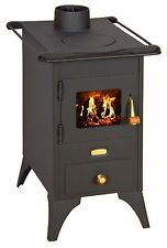Wood Burning Stove Retro Cast Iron Plate Log Burner Fireplace Mini 5kw PRITY NEW