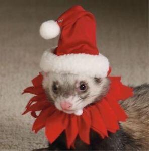 MARSHALL PET FERRET CHRISTMAS THEME HOLIDAY SANTA SUIT COLLAR. FREE SHIP TO USA
