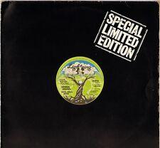 "DENNIS BROWN ""EQUAL RIGHTS"" REGGAE MAXI 45T  1978 LIGHTNING 527"