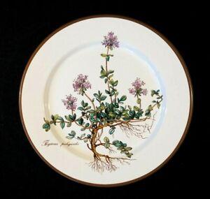 Villeroy Boch Botanica Lunch Plate