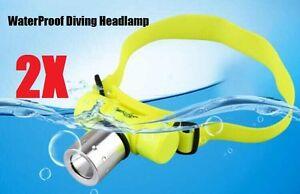 2 X CREE Q5 LED Waterproof  Scuba Diving Headlight Headlamp AAA Battery