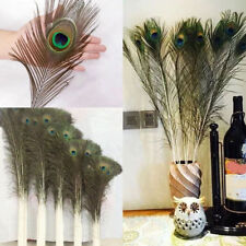 """PEACOCK TAIL FEATHERS NATURAL 20""""-22"""" INCHES LONG FOR BOUQET MILLINERY CRAFT"""