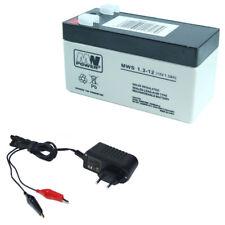 Akku Ladegerät 12v In Akkus Batterien Günstig Kaufen Ebay