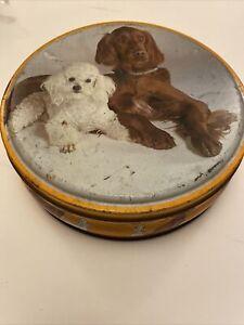 Vintage Orange Cute Biscuit Tin Red Setter Poodle Dog Retro