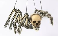 Hanging Skeleton Spider with Human Skull Halloween Prop Haunted House Decoration