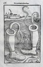 Vegetius végèce de l 'art militaire GUERRA ARTE re militari legno chiave 1535 Epitoma