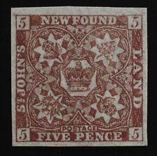#19 Newfoundland 5d Chocolate Brown 1861 MNH original gum Never hinged FRESH GEM