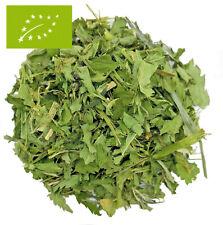 100g (55,00?/1kg) BIO Hanf Tee GESCHNITTEN | Hanftee | 1A Top Qualität