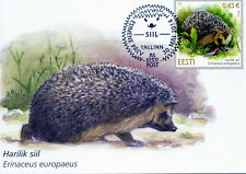 2014 Estonia, fauna, hedgehog, maxi card