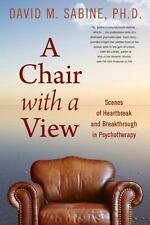 A Chair with a View: Scenes of Heartbreak and Breakthrough in Psychotherapy