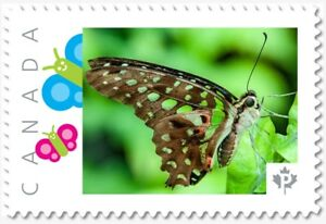 Malachite BUTTERFLY = postage stamp MNH Canada 2018 [p18-09-22]