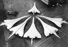 1986 Entire British Concorde fleet in one picture January 21 11 x 16 Photograph