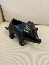 Dinosaur Planter Ceramic Triceratops Black Garden Flower Pot