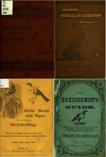 71 OLD BOOKS ON TAXIDERMY TECHNIQUES STUFFING MOUNTING ANIMALS BIRDS INSECTS DVD