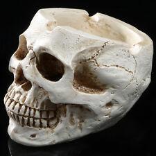 1pc Human Skull Replica Resin Model Halloween prop The ashtray personality