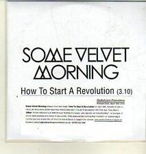 (CW349) Some Velvet Morning, How to Start a Revolution - 2012 DJ CD