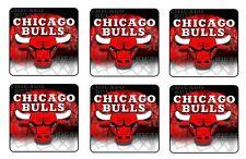 "CHICAGO BULLS COASTERS 1/4"" BAR & BEER SET OF 6"