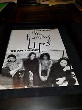 The Flaming Lips She Don't Use Jelly Rare Original Radio Promo Poster Ad Framed!