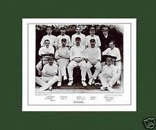 MOUNTED CRICKET TEAM PRINT - PLAYERS - 1894