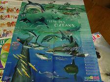 Medizini  4 Poster  Wissensposter *Tiere des Ozeans + Tiere der Tiefsee 2007/08