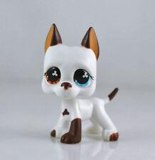 #577 Rare Littlest Pet Shop White & Brown Great Dane DOG Puppy Blue Eye LPS