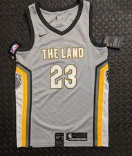 Nike Cleveland Cavaliers The Land Ctiy Edition Swingman Jersey LEBRON JAMES S 40