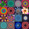 Full Drill 5D DIY Dreamy Flower Diamond Painting Embroidery Cross Stitch Decor
