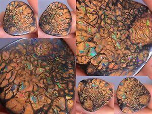 12.82 TCW DOUBLE-SIDED Natural AUSTRALIA KOROIT  Boulder Opal Stone
