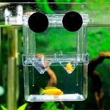 Scatola di isolamento camera allevamento divisorio pesci incubatrice acquario