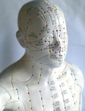 "22"" human Chinese acupuncture model statue New"