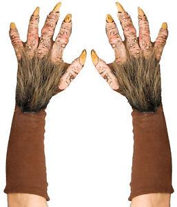 Beast Hands Adult Gloves Wolf Werewolf Brown Rotted Look Monster Halloween