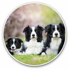 2 x Vinyl Stickers 10cm - Border Collie Family Dogs Animals Cute Cool Gift #8625