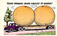 1963 Texas Oranges Farming Agriculture Exaggeration postcard 4111