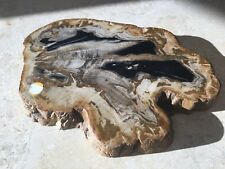 Beautiful Roost Large Petrified Wood  Cheese Tray Board