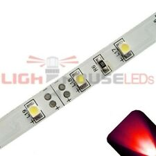 Red - PLCC2/3528 12V LED Strip - Adhesive Backing - 5m Roll / Reel