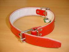 Halsband a. echtem Leder gepolstert 80cm / 40mm rot