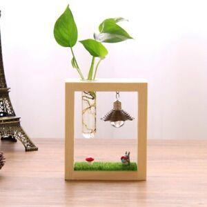 Totoro Micro landscape Hydroponic Decorative Ornament & Gift for Home décor New