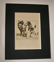 Elkhound Airedale Terrier Dog Print Diana Thorne Bookplate 1936 Matted Attention