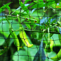 5M Wide Anti Bird Garden Pond Net Fruit Crop green Flower Plant Veg Protection