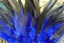 "50 Under 6"" Royal Blue Half Bronze Schlappen Strung Rooster Feathers  US Seller"