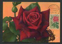 FRANCE MK 1962 FLORA ROSEN ROSE ROSES MAXIMUMKARTE CARTE MAXIMUM CARD MC CM d013
