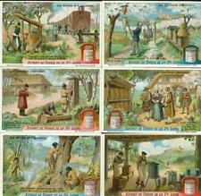 LIEBIG : S_1135 : 'Abeilles et l'apiculture (les)