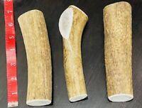 EXTRA LARGE Natural ELK Antler Shed Premium Dog Dental Chew Moose FRESH Horn