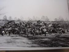 WWII SCRAP DRIVE JUNK YARD CHEV FORD BUICK OLD CARS   12 X 18  PHOTO  PICTURE