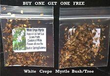 Buy 1 Get 1 Free * White Crepe Myrtle Bush/Tree * 100 + Seeds 4 U
